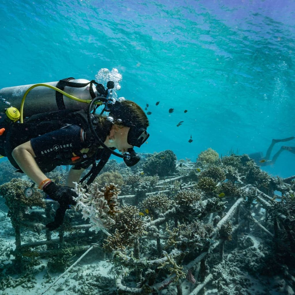 Essential Basic for Scuba Diving for Beginners: Never Hold Breaths