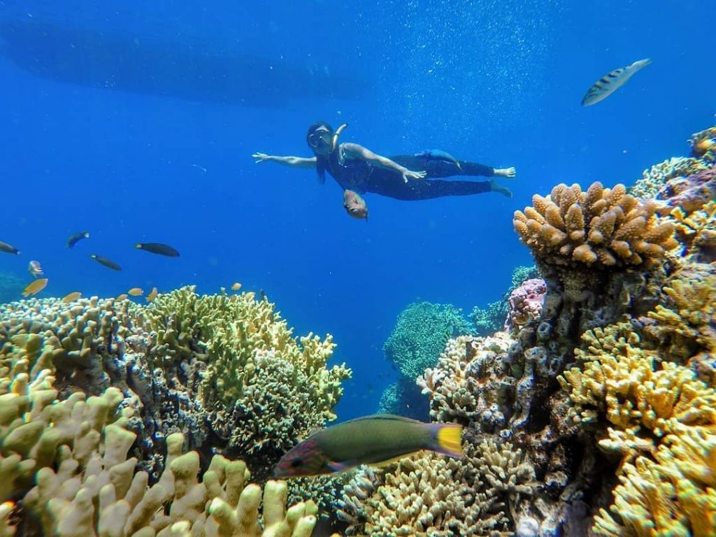 How to Make Your Scuba Diving Vacations for Beginners Better