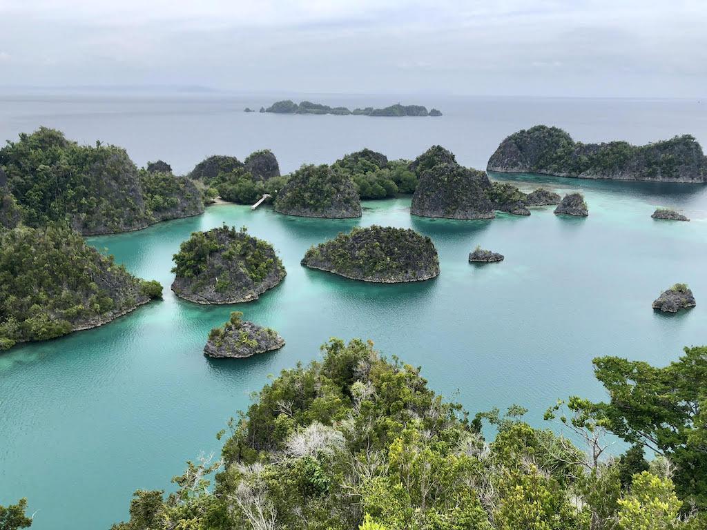 Exploring Snorkeling Spot Kri Island Raja Ampat